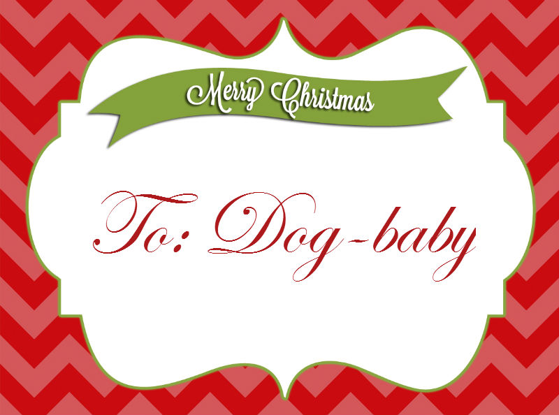 Modernista's Holiday Gift Guide Under $25 for Dog/Pet